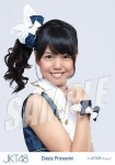 diasta  - Photopack Ponytail to Shushu