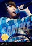 diasta (versi 3) -  Photopack Concert Edition 2013