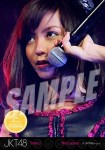 rica (versi 2) -  Photopack Concert Edition 2013