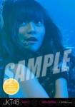 stella (versi 3) -  Photopack Concert Edition 2013