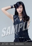 noella - Photopack Lay down